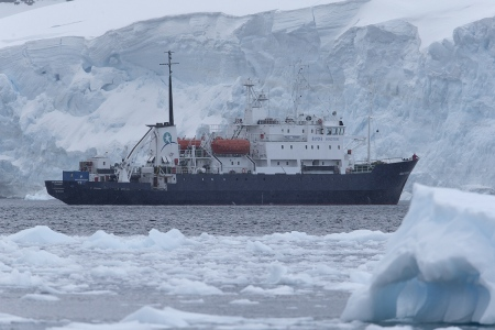 Polar Pioner, Neko Harbour