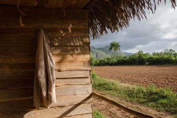 travel of photography to cuba , countryside in vinales, province of pinar del rio