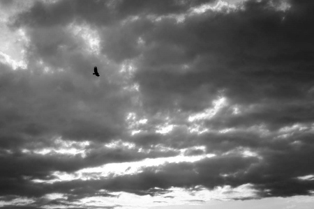 solitud in the sky , cuban photography fine art by louis alarcon